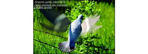 Pigeon électrique - -Ref 20362