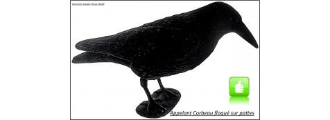 Appelant-Corbeau-floqué sur pattes-Ref 4174