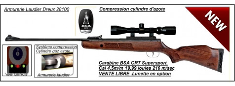 "Carabine BSA air comprimé GRT Supersport SE-Cal 4.5mm-Cylindre gaz azote compressible  19,99 joules-""Promotion"" -Ref 19617"