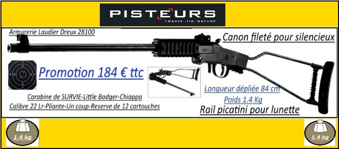 carabine chiappa little badger 22