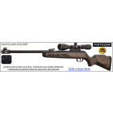 Carabine Gamo 440 Hunter AS 19.90 joules+ Lunette Gamo 3x9x40wr + frein bouche air stopper- Promotion-Ref 29253