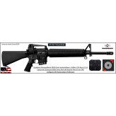 Carabine-Diamondback-DB16-Semi-automatique-U.S.A-Calibre 5.56 -223 Rem-TAR-Catégorie B4-Ref DB530-Autorisation Préfecture
