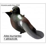 """Appelant-  Palombes- ou -Pigeons- """"AILES TOURNANTES""""-""""Promotion"""".Ref 14726"""