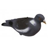 """Appelants- Palombes- Pigeons-Floqué-""""Promotion""""-Ref 19909"""