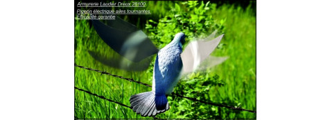 Appelant-Pigeon électrique - -Ref 20362