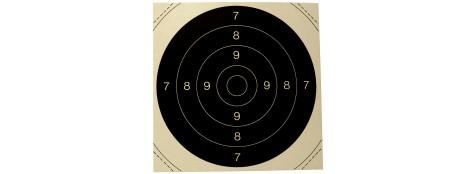 Centres  50 bis de Cibles de tir cartonnées 21X21 cm  pour cibles 50X50cm. Paquet de 100.Ref 3592