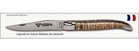 Couteau-Laguiole en Aubrac-Mod  Molaires de Mammouth -Clair-Lame de 12 cm -Ref L0712DTI/FS/1